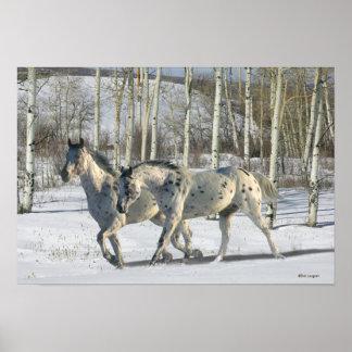 Fantasy Horses: Winter Wonderland Poster