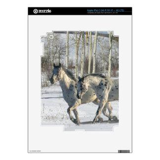 Fantasy Horses: Winter Wonderland Skin For iPad 3