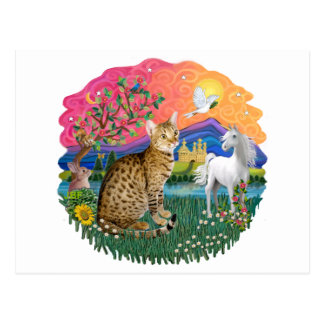 Fantasy Land (ff) - Ocicat Postcard