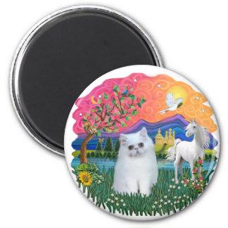 Fantasy Land (ff) - Persian kitten (white) Magnet