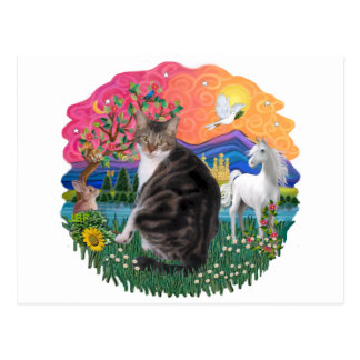 Fantasy Land - Tabby and White cat (AmSH) Postcard