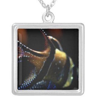 fantasy of fins square pendant necklace