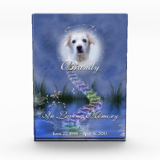 Fantasy Pond Your Pet Photo Personalized Memorial Acrylic Award