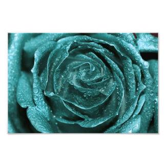 Fantasy Teal Rose Photo Print