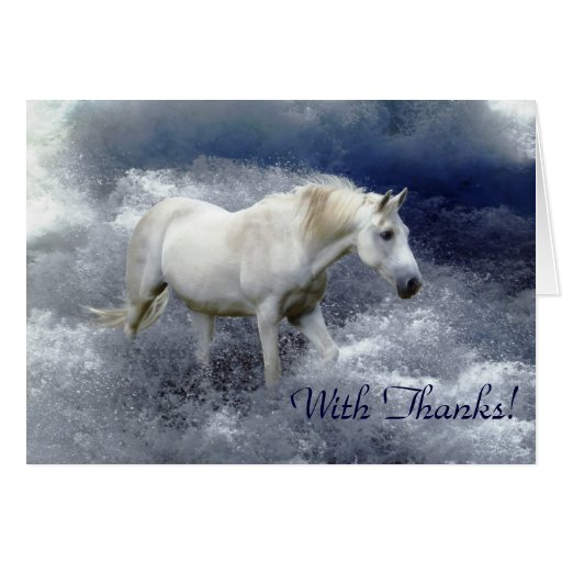 Fantasy White Horse & Ocean Surf Thank You Cards