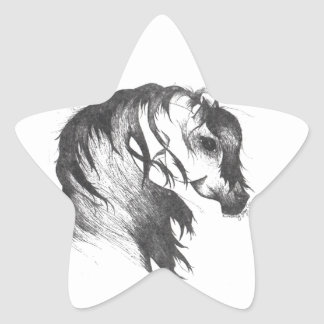 Fantasy wind blown horse star sticker