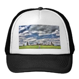 FAP317 HATS