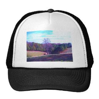 Far Away Horse in a Purple Field Trucker Hat