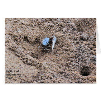 Far from Home !  Fiddler Crab Card