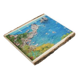 Faraglioni Rocks - Woodland Wooden Photo Panel
