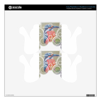 Farbenfroher Eisvogel Decal For PS3 Controller