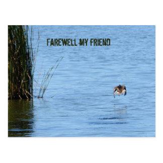 Farewell my friend postcard