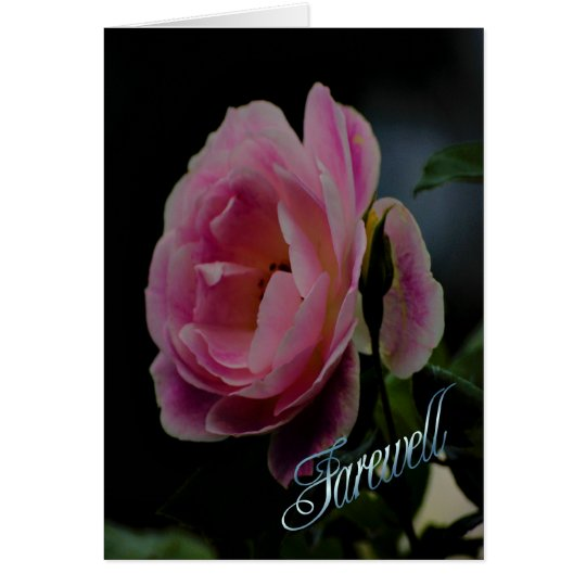 Farewell pink rose goodbye see you soon card