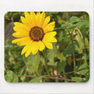 Farewell Summer-Sunflower Mouse Pad