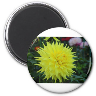 Farewell to Dreams 2 Inch Round Magnet