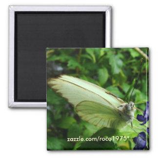 farfalla bianca 2 inch square magnet