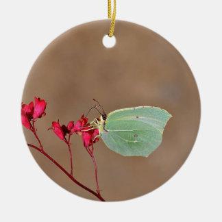 farfalla, natura, fiore, fiori, piante, Ali, Adorno Navideño Redondo De Cerámica