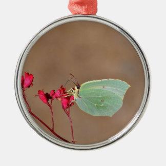 farfalla, natura, fiore, fiori, piante, Ali, Adorno Navideño Redondo De Metal