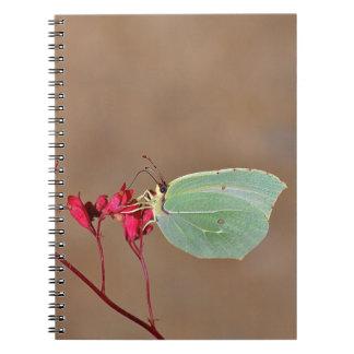 farfalla, natura, fiore, fiori, piante, Ali, inset Spiral Notebook