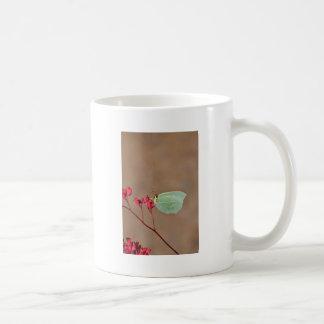 farfalla,natura,fiore,fiori,piante,ali,insetto,fot coffee mug