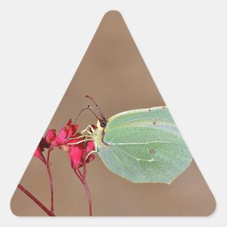 farfalla,natura,fiore,fiori,piante,ali,insetto,fot triangle sticker
