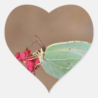 farfalla, natura, fiore, fiori, piante, Ali, Pegatina En Forma De Corazón