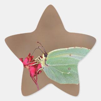farfalla, natura, fiore, fiori, piante, Ali, Pegatina En Forma De Estrella