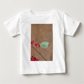 farfalla, natura, fiore, fiori, piante, Ali, Remera