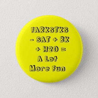 FARKSTKS   - SAT + BK      + H2O =A Lot More Fun Pinback Button