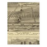 Farm and residences of Joseph Postcards