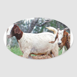 Farm Animal Gifts Oval Sticker