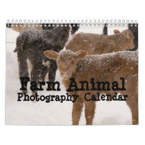 Farm Animal Photography Calendar