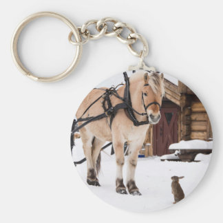 Farm animal talk horse and rabbits basic round button keychain