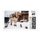 Farm animal talk horse and rabbits postage