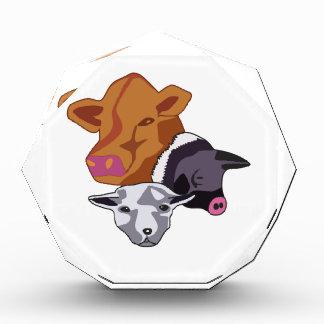 Farm Animals Award