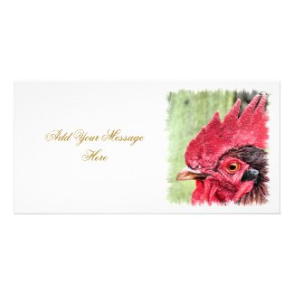 FARM ANIMALS ROOSTER UK photocard
