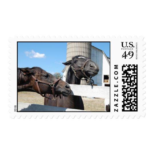 Farm Barn Horses Postage Stamp