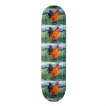 Farm Bird Rooster Chickens Skateboard Deck