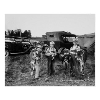 Farm Boys with Calves at the Warren County Fair Poster