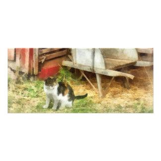 Farm Cat Rack Card