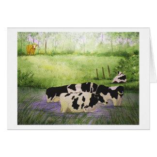 Farm Cows Blank Greeting Card
