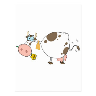 Farm Dairy Cow Chewing On A Flower Postcards