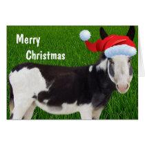 Farm Donkey Merry Christmas Card