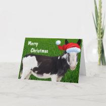 Farm Donkey Merry Christmas Holiday Card