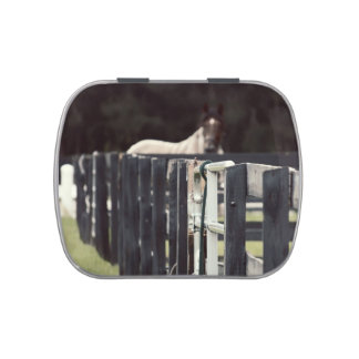 farm fence with horse behind sepia candy tin