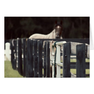 farm fence with horse behind sepia card