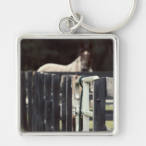 farm fence with horse behind sepia keychains