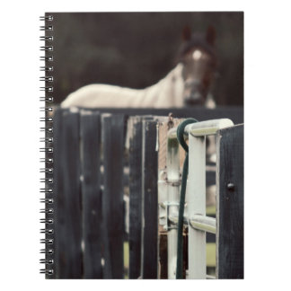 farm fence with horse behind sepia spiral note book