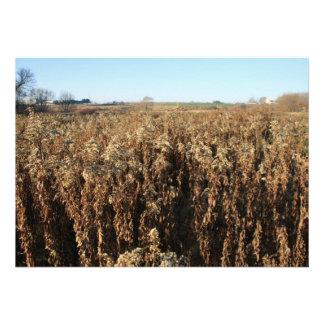 Farm Field in Autumn Invitation