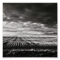 farm field rows poster